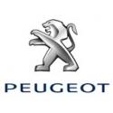 PEUGEOT Filtros Sustitucion Pipercross