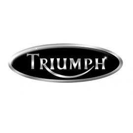 TRIUMPH Filtros Sustitucion Pipercross
