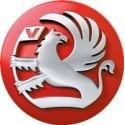 VAUXHALL Filtros Sustitucion Pipercross