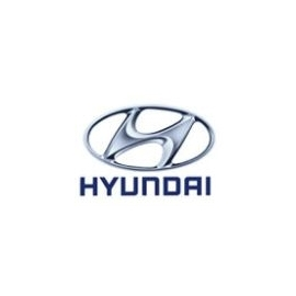 Hyundai Hel Performance