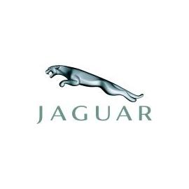 Jaguar Hel Performance