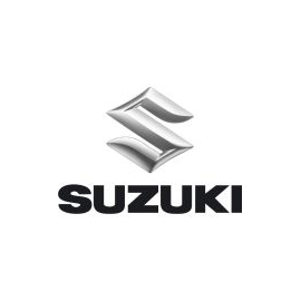 SUZUKI ACL Bearings