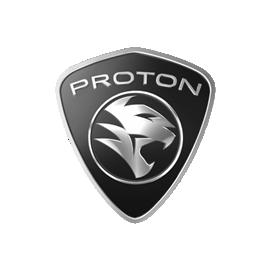 PROTON Filtros Sustitucion Pipercross